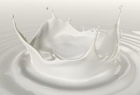 Sterownik schładzarki do mleka Sach-12M-o